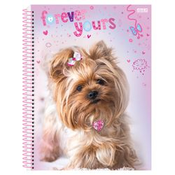 mypets_2020_universitario_capa1